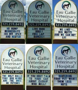A  series of humorous messages on a veterinary hospital sign.