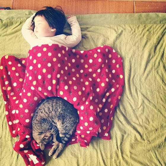 An Asian toddler naps under a polka-dotted blanket while her cat curls up with her to join her in a nap.