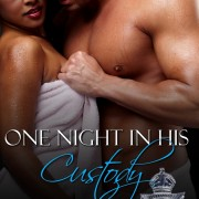 One Night In His Custody by Teri Fowler
