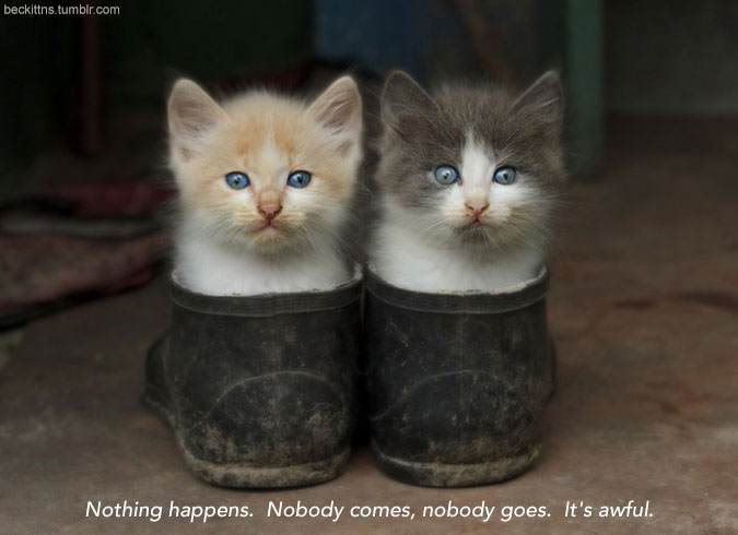 "Two kittens sit side by side in a pair of shoes flecked with dirt. Caption reads ""Nothing happens. Nobody comes, nobody goes. It's awful."""