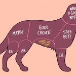 An illustration of a dog where the body parts are outlined and labeled like a butcher's chart. Each section says whether or not a dog want to be pet there.