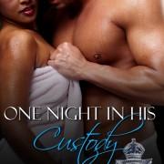 One Night In His Custody by Teri Fowler