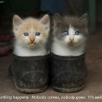 """Two kittens sit side by side in a pair of shoes flecked with dirt. Caption reads """"Nothing happens. Nobody comes, nobody goes. It's awful."""""""